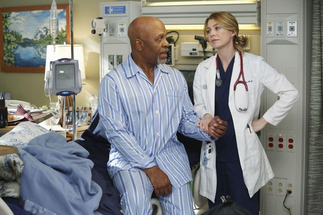 Ob es noch Hoffnung auf eine vollständige Genesung von Dr. Webber (James Pickens Jr., l.) gibt, wird sich in der nächsten Untersuchung von Meredith... - Bildquelle: ABC Studios