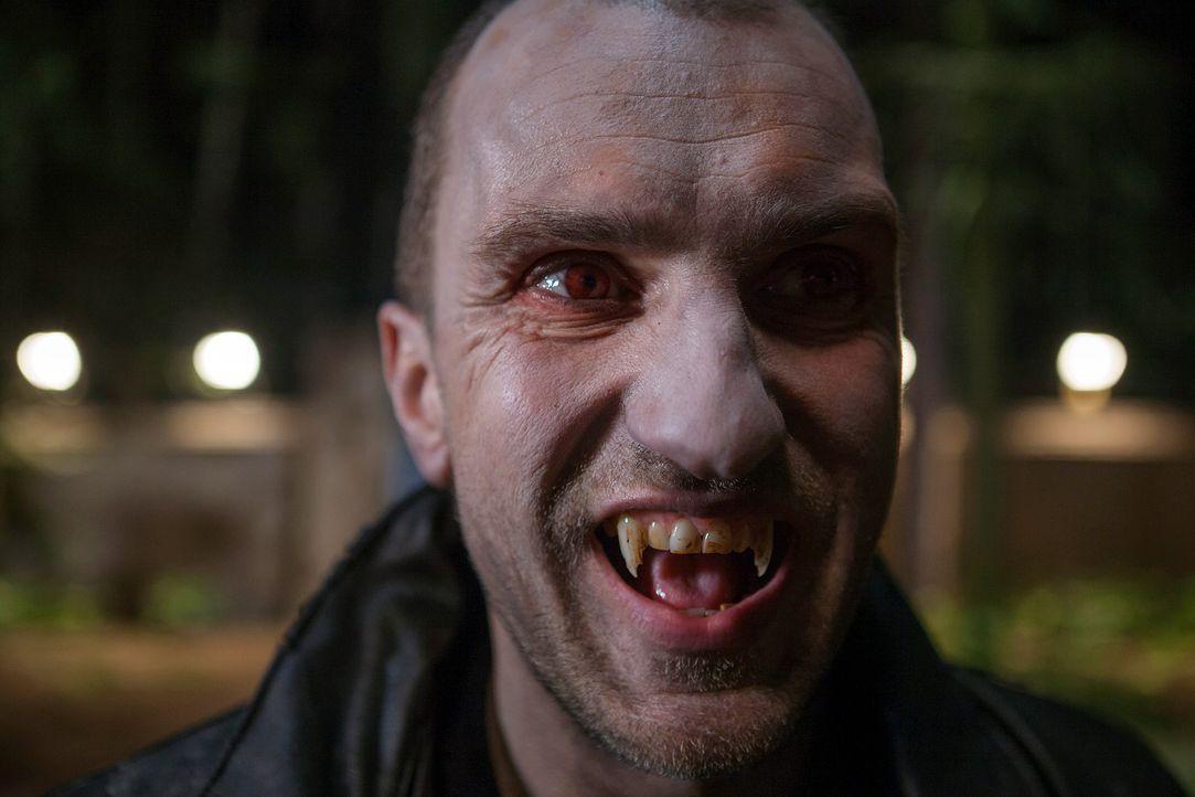 Vampire-Academy-Strigoi-Universum-Film - Bildquelle: Universum Film