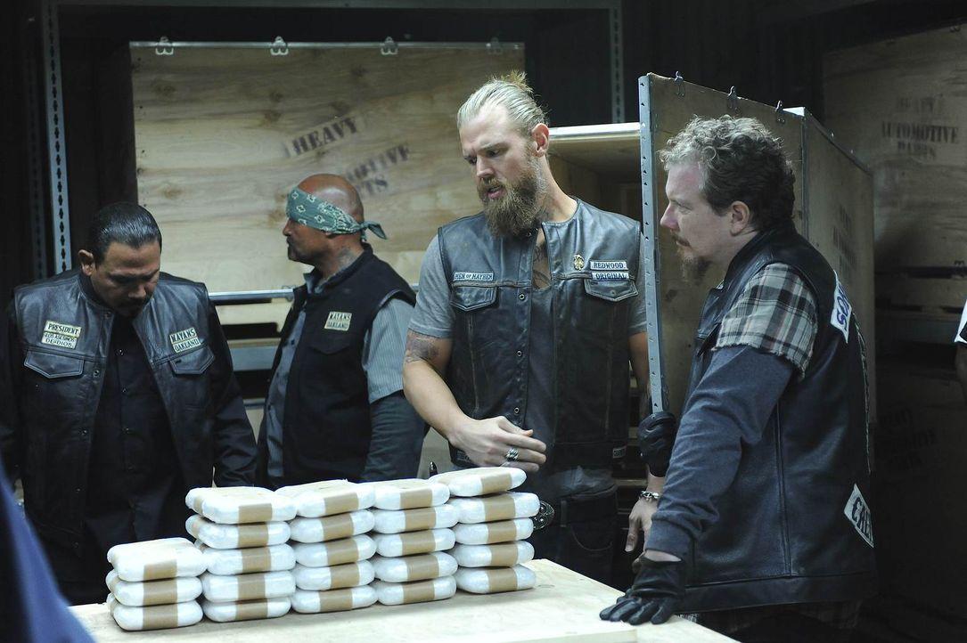 Während Alvarez (Emilio Rivera, l.) davon überzeugt ist, dass keiner seiner Kumpel das Kokain gestohlen hat, zweifeln Opie (Ryan Hurst, 2.v.r.) und... - Bildquelle: 2011 Twentieth Century Fox Film Corporation and Bluebush Productions, LLC. All rights reserved.