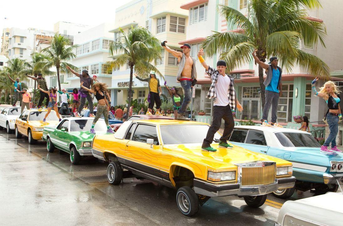 """Sorgen für ein deftiges Verkehrschaos: """"The Mob"""" ist eine geheime Streetdancer-Truppe, die in Miami mit ihren perfekten Flashmobs die Behörden verst... - Bildquelle: 2011 Summit Entertainment, LLC. All rights reserved."""