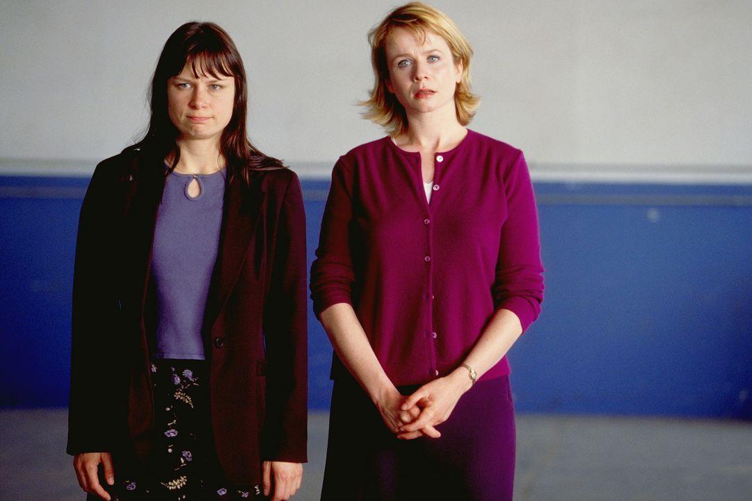 Bringen Barrys Leben völlig durcheinander: Elizabeth (Mary Lynn Rajskub, l.) und Lena (Emily Watson, r.) ... - Bildquelle: Senator Film