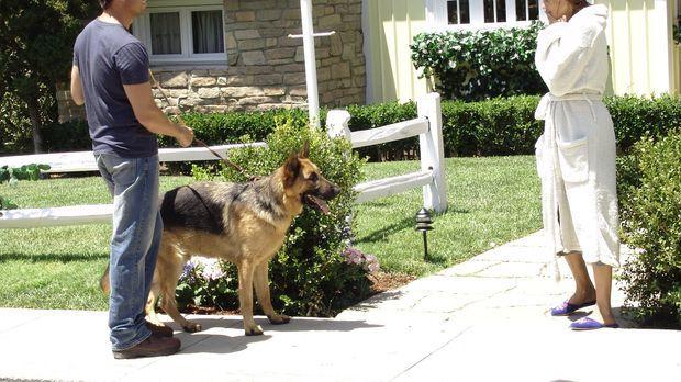 Susan (Teri Hatcher, r.) gibt alles, um ihrem Nachbarn Mike (James Denton, l....
