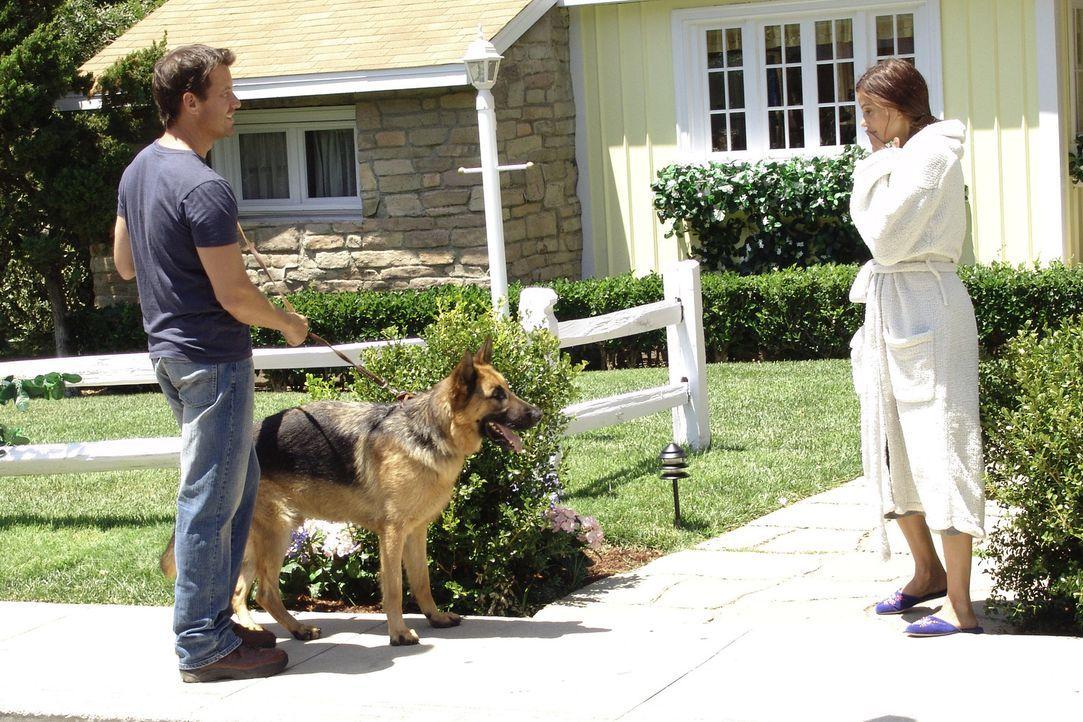 Susan (Teri Hatcher, r.) gibt alles, um ihrem Nachbarn Mike (James Denton, l.) näher zu kommen ... - Bildquelle: Touchstone Television