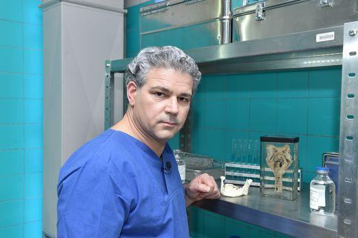 Prof. Dr. Michael Tsokos ist Leiter der Berliner Rechtsmedizin und hilft mit...