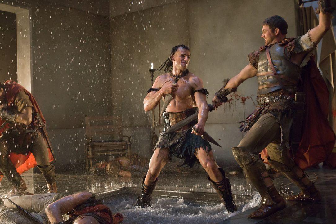 """Auch Marcus Crassus (Luke Pegler, r.) hat keine Chance gegen den äußerst brutalen Mörder """"Der Ägypter"""" (Steven Dunlevy, l.) ... - Bildquelle: 2011 Starz Entertainment, LLC. All rights reserved."""