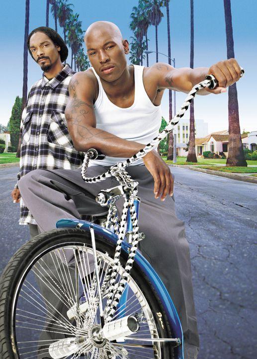 Als Yvettes Ex-Freund Rodney (Snoop Doggy Dogg, l.) aus dem Gefängnis entlassen wird, gerät Jody (Tyrese Gibson, r.) in arge Bedrängnis ... - Bildquelle: 2003 Sony Pictures Television International