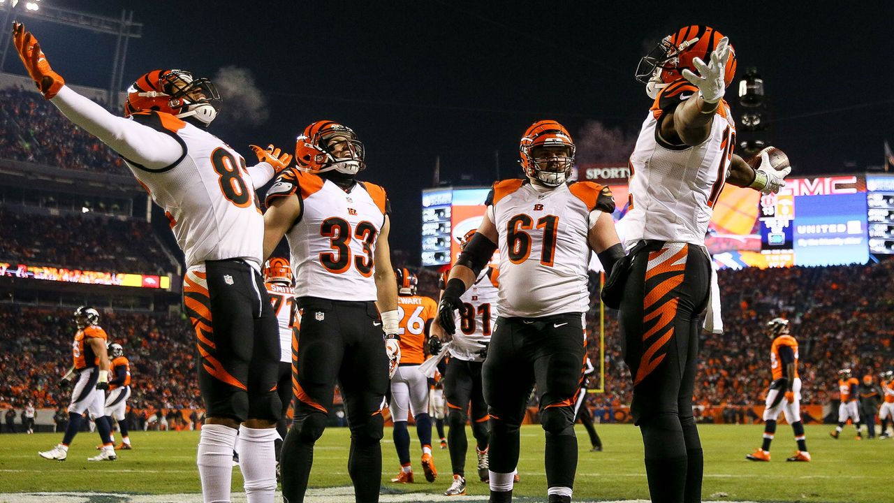 Cincinnatti Bengals: 8 Siege (2015) - Bildquelle: 2015 Getty Images