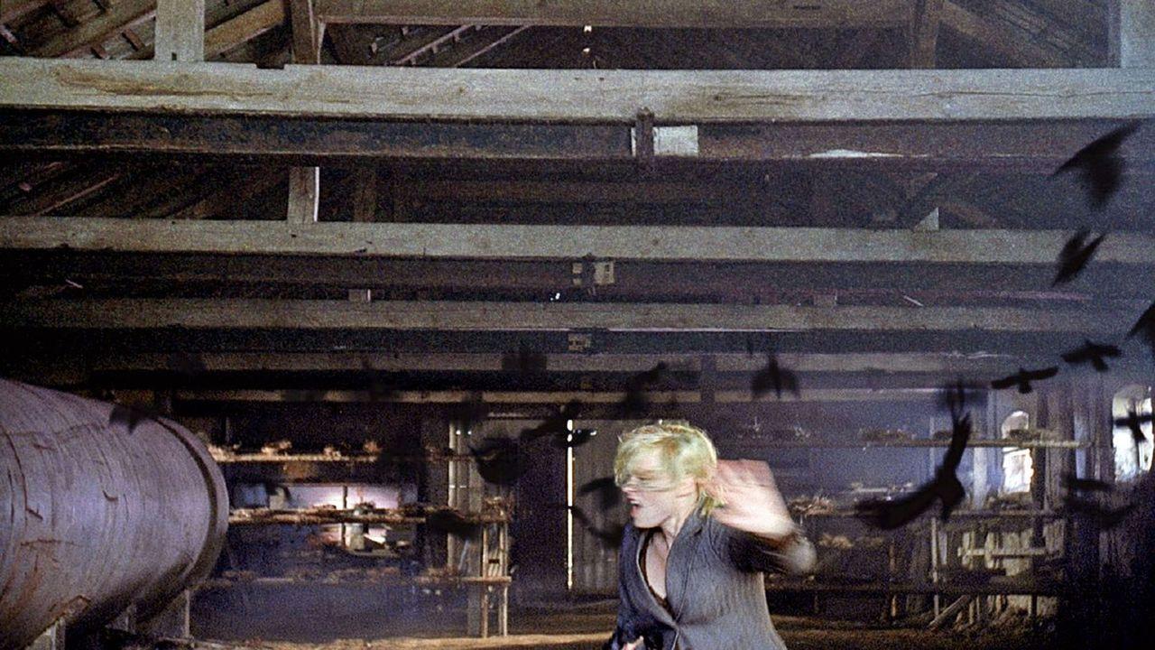 Attackiert von den Krähen, muss Alex (Susanna Simon) aus der Scheune fliehen. - Bildquelle: TVT Sat.1