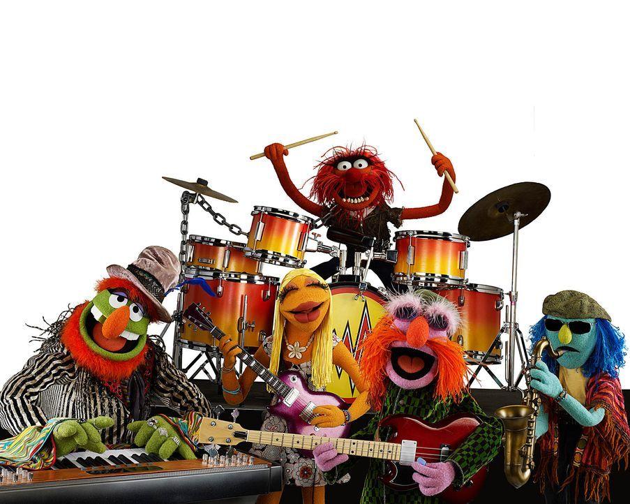 muppets-freisteller-08-disneyjpg 1900 x 1520 - Bildquelle: Disney