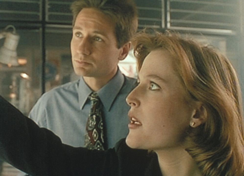 Mulder (David Duchovny, l.) und Scully (Gillian Anderson, r.) stellen bei ihren Recherchen über eine Mordserie in Aubrey, Missouri, fest, dass es do... - Bildquelle: TM +   Twentieth Century Fox Film Corporation. All Rights Reserved.