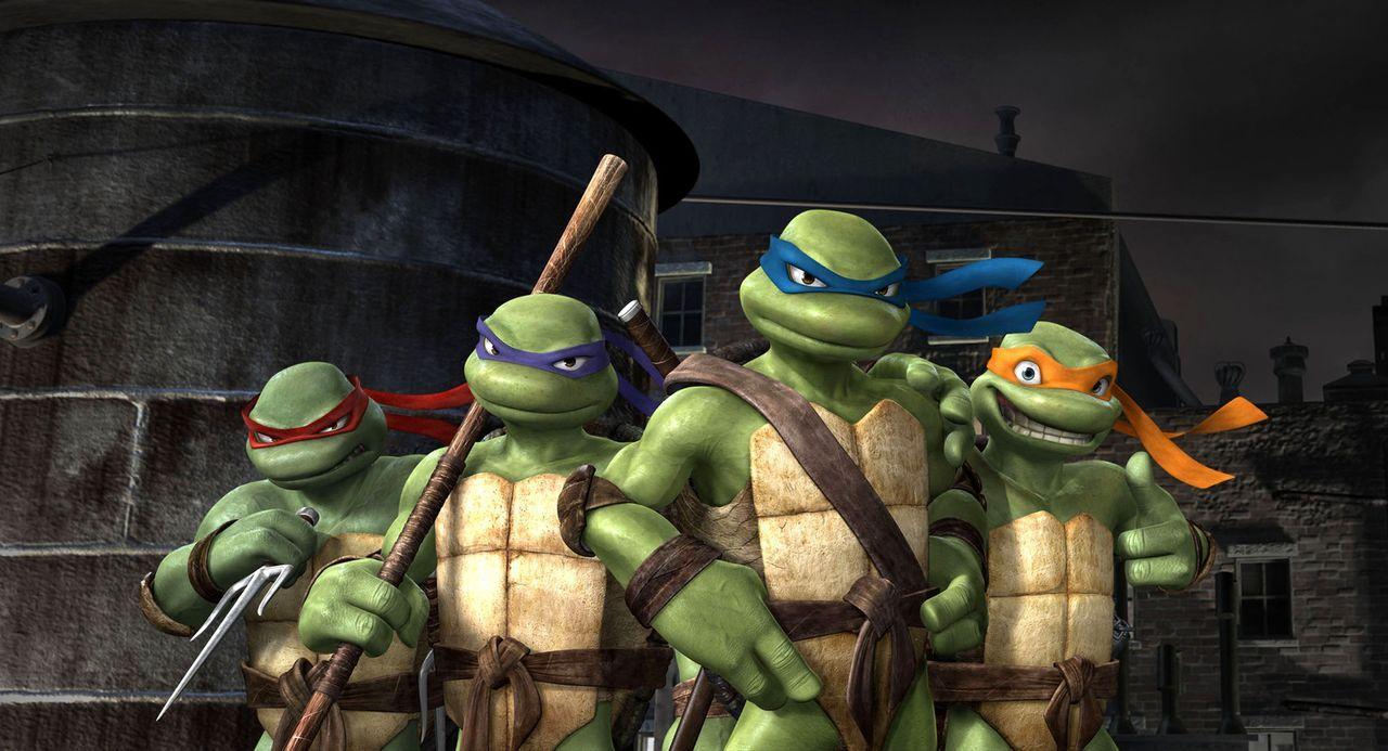Im Kampf gegen das Böse bestehen Leonardo, der Anführer (3. v. l.), Donatello, der Denker (2. v. l.), Raphael, der Draufgänger (1. v. l.), und Miche... - Bildquelle: TOBIS Filmkunst GmbH