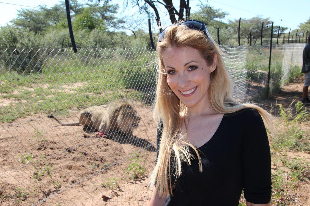 Andrea Kaiser besucht die Harnas Wildlife Foundation in Namibia - Ein Waisenhaus für afrikanische Wildtiere ... - Bildquelle: SAT.1