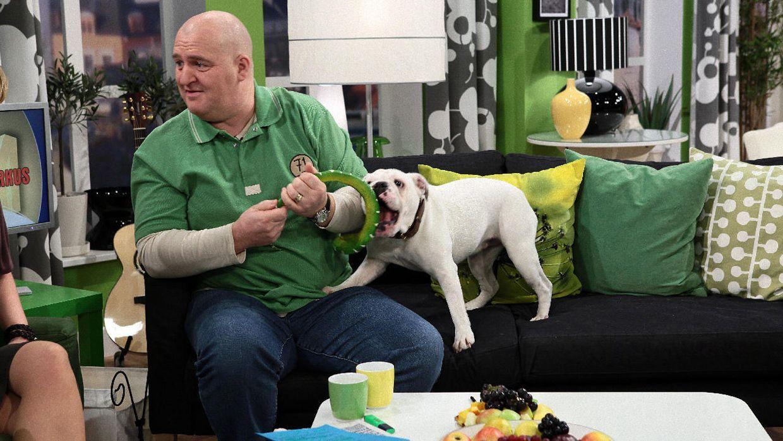 fruehstuecksfernsehen-studiohund-lotte-in-action-im-studio-076