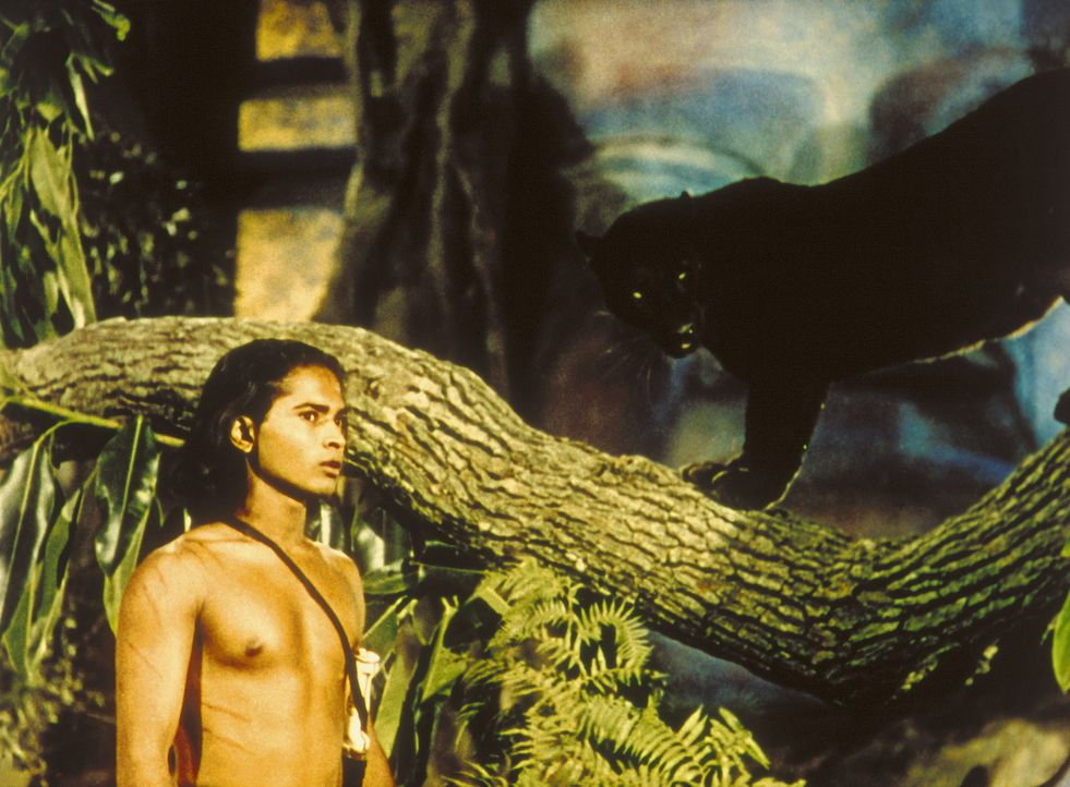 Der treue Panther Baghira warnt Mowgli (Sabu, l.) vor dem hinterlistigen Tiger Schir Khan ... - Bildquelle: United Artists