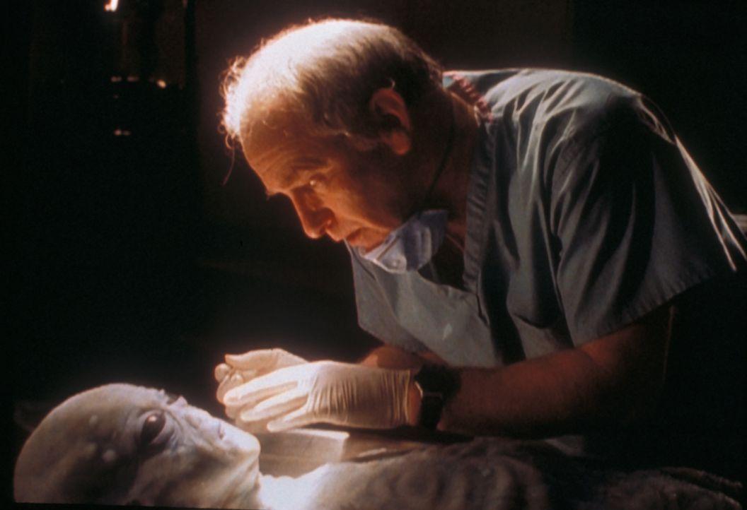Der Anthropologe Arlinsky (Matthew Walker) untersucht den Körper eines  Außerirdischen, der im ewigen Eis eines kanadischen Gletschers gefunden wurd... - Bildquelle: TM +   Twentieth Century Fox Film Corporation. All Rights Reserved.