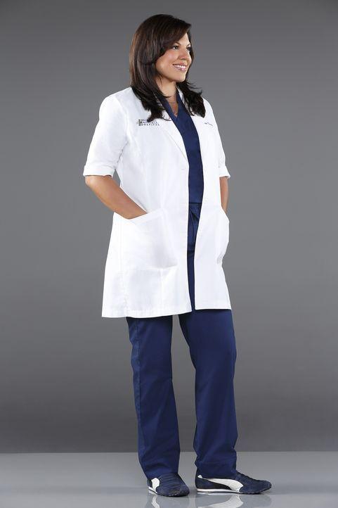 (10. Staffel) - Als Ärztin muss Dr. Callie Torres (Sara Ramirez) täglich mit neuen Überraschungen rechnen ... - Bildquelle: ABC Studios