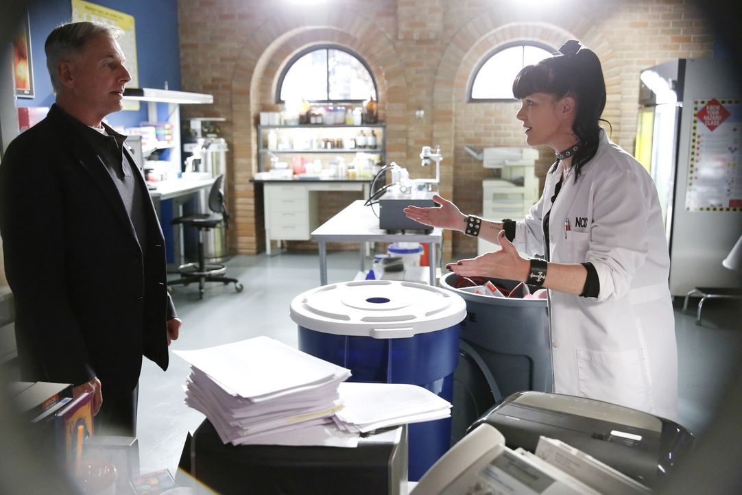 Ein neuer Mordfall beschäftigt Gibbs (Mark Harmon, l.) und Abby (Pauley Perrette, r.) ... - Bildquelle: Cliff Lipson CBS Television
