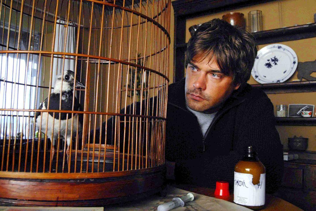 Georg (Raphaël Vogt) kümmert sich um einen kranken Vogel.. ... - Bildquelle: Hardy Spitz Sat.1