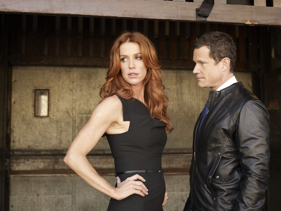 (1. Staffel) - Gemeinsam versuchen Detective Carrie Wells (Poppy Montgomery, l.) und Detective Al Burns (Dylan Walsh, r.), Verbrechen das Handwerk z... - Bildquelle: Sony Pictures Television Inc. All Rights Reserved.