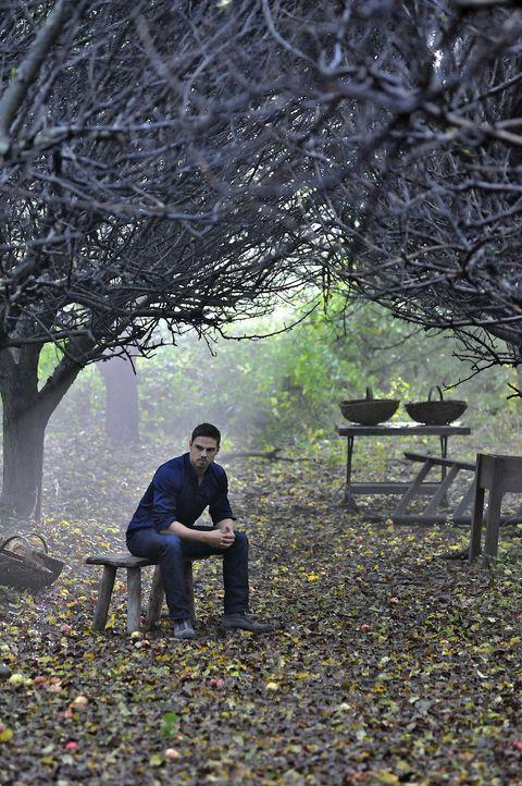 Ahnt Vincent (Jay Ryan), dass Cat neue Informationen über ihn herausfinden möchte? - Bildquelle: 2013 The CW Network, LLC. All rights reserved.