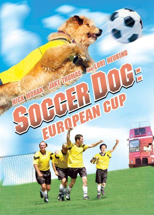 Soccer Cup: Torschütze auf 4 Pfoten - Plakatmotiv - Bildquelle: 2006 Sony Pictures Television International
