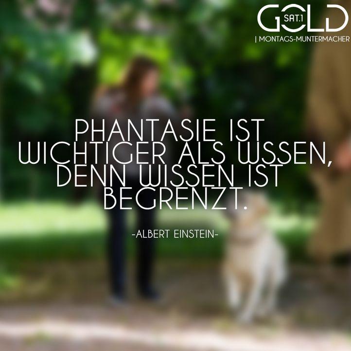 phantasie