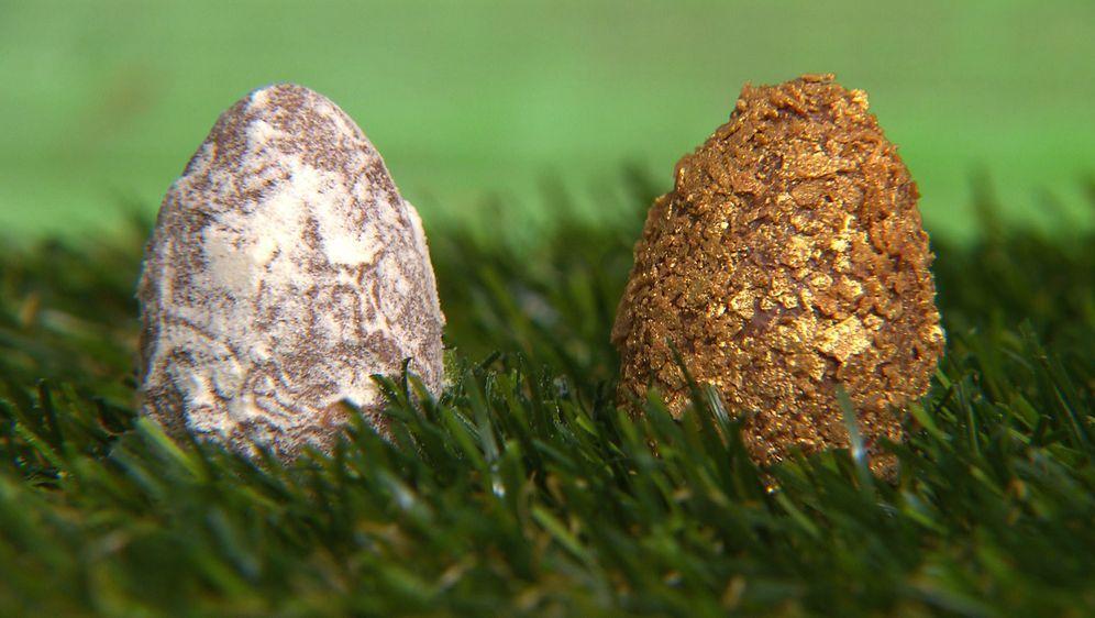 Pralinen Eier: Honig-Thymian
