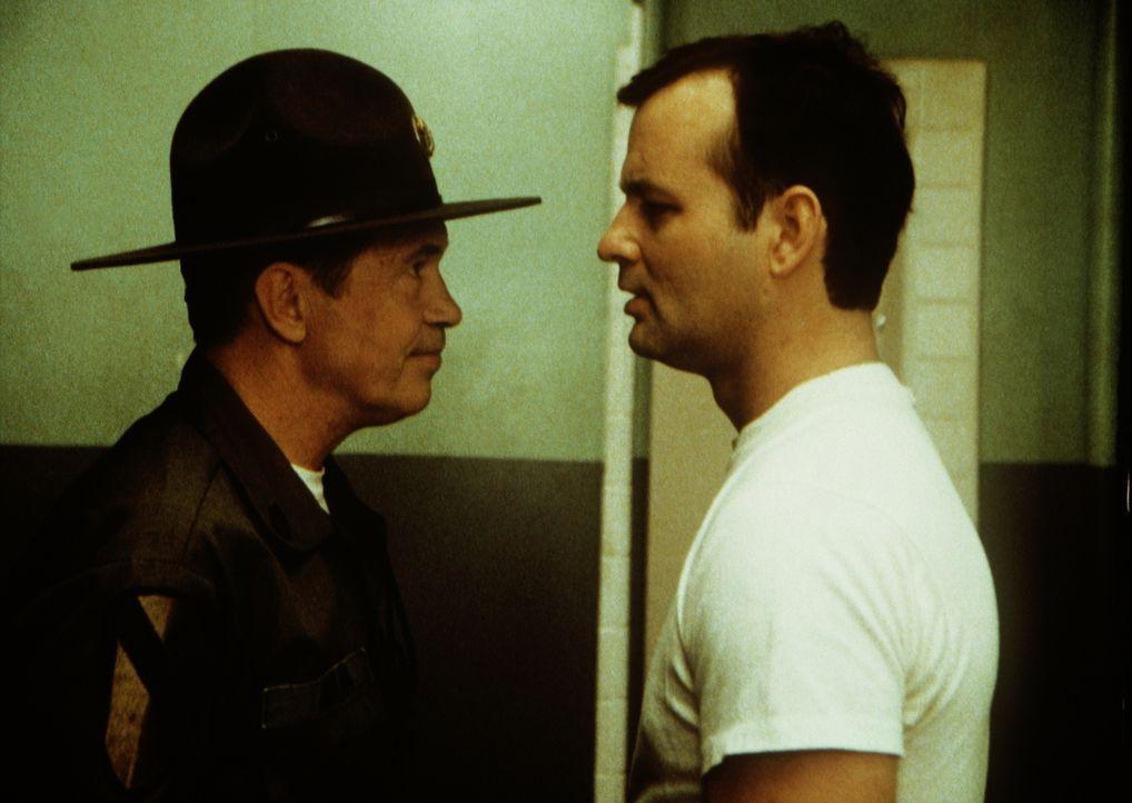 Mit allerlei Blödsinn und Disziplinlosigkeit bringt John Winger (Bill Murray, r.) seine Einheit ganz schön durcheinander, was Sergeant Hulka (Warr... - Bildquelle: Columbia Tri-Star