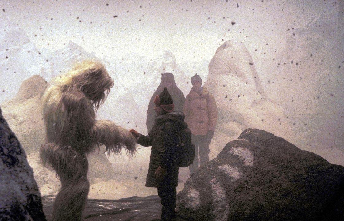 Endlich ist der Yeti in Sicherheit! Charlie (Ines Nieri, vorne), Tim (Oliver Stokowski, M.) und Chris (Sophie von Kessel, r.) können sich von ihrem... - Bildquelle: Leslie Haslam ProSieben