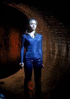 Buffy - Buffy (Sarah Michelle Gellar) ist auf den Weg in die Unterwelt ... -...