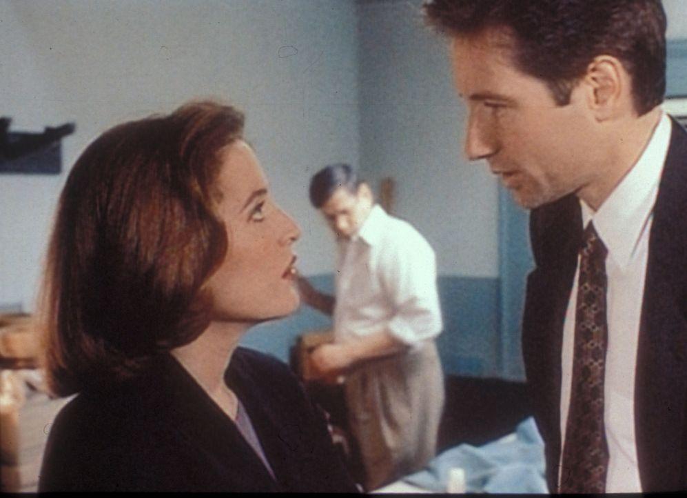 Mulder (David Duchovny, r.) und Scully (Gillian Anderson, l.) rätseln über eine Reihe von Todesfällen, deren Opfer nie gefunden wurden, aber offenba... - Bildquelle: TM +   2000 Twentieth Century Fox Film Corporation. All Rights Reserved.