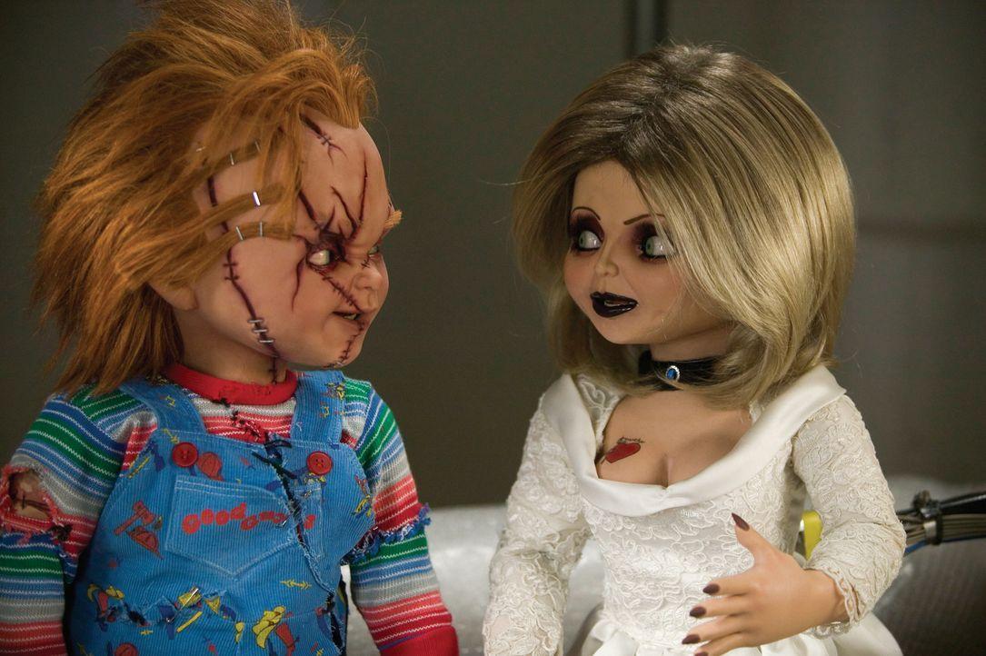 Als der verwaiste Glen seine Eltern Chucky, l. und Tiffany, r. im Fernsehen entdeckt, macht er sich auf nach Hollywood, um die beiden aus dem Reich... - Bildquelle: Constantin Film