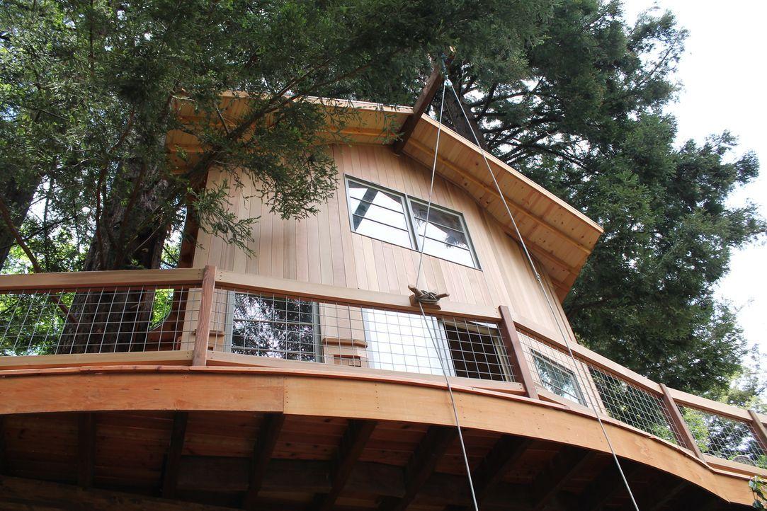 In 6 m Höhe bauen die Treehouse Guys ein knapp 28 qm großes Baumhaus, das es ganz schön in sich hat ... - Bildquelle: 2015, DIY Network/Scripps Networks, LLC. All Rights Reserved.