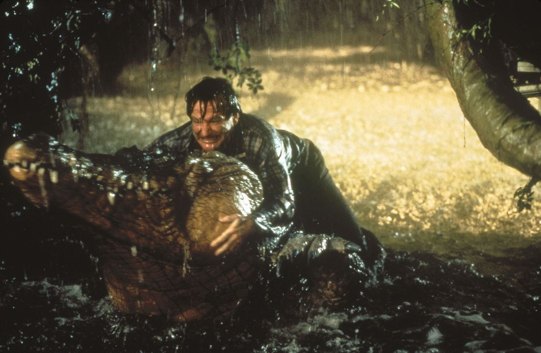 Ein Mann geht durch die grüne Hölle: Alan (Robin Williams) kämpft mit einem Krokodil ... - Bildquelle: COLUMBIA TRISTAR INTERNATIONAL TELEVISION