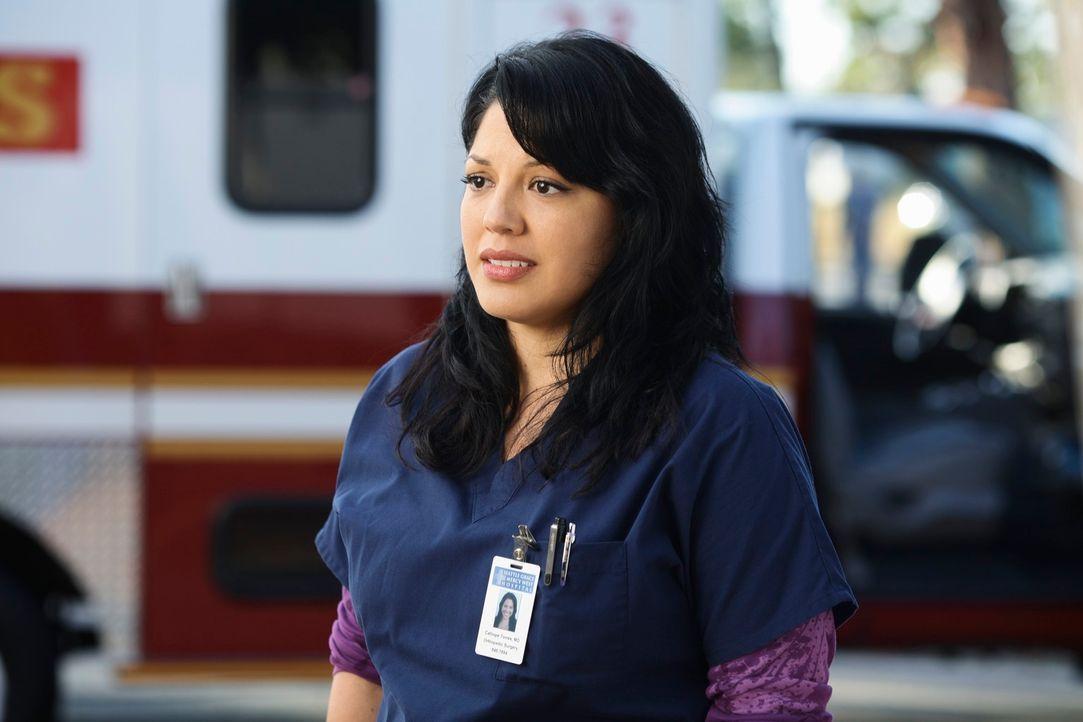 Ist emotional schwer angeschlagen: Callie (Sara Ramirez) ... - Bildquelle: Touchstone Television