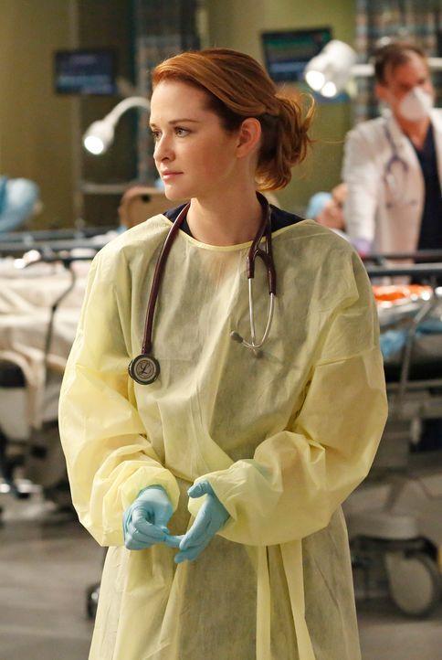 Nimmt die Explosion im Einkaufszentrum sehr mit: April (Sarah Drew) ... - Bildquelle: ABC Studios