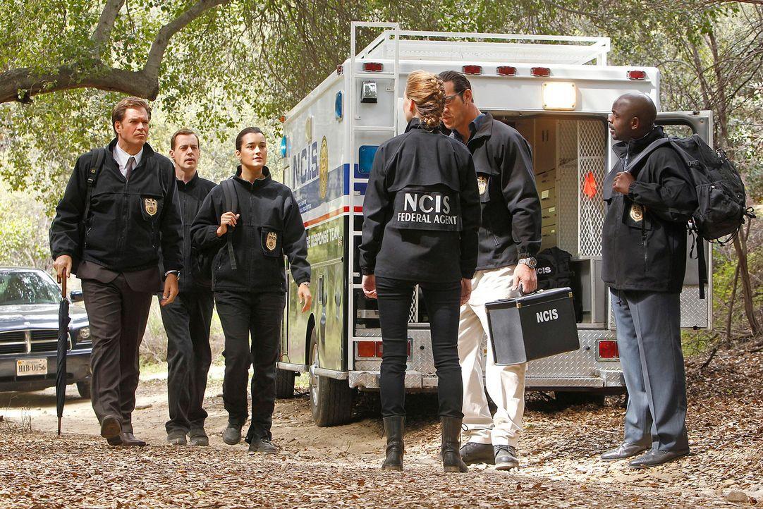 Die Suche nach dem Hafenmörder geht weiter: Tony (Michael Weatherly, l.), McGee (Sean Murray, 2.v.l.), Ziva (Cote de Pablo, 3.v.l.), NCIS Special Ag... - Bildquelle: CBS Television
