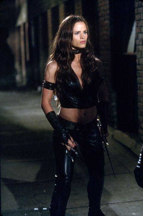 Kampfkunst-Expertin Elektra (Jennifer Garner) liebt einen Mann, dem sie auch immer wieder ans Leder will ... - Bildquelle: 2003 Twentieth Century Fox Film Corporation.  All rights reserved.