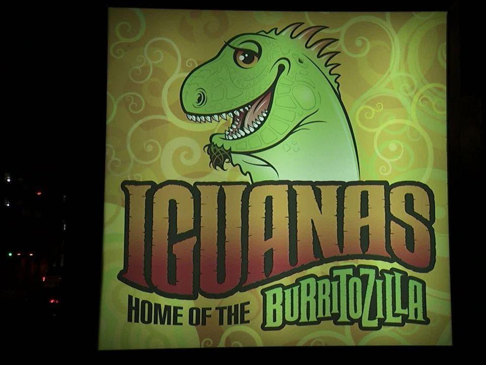 Das Iguanaz im kalifornischen San Jose ist bekannt für seinen wirklich gigantischen Burrito, den Burritozilla ... - Bildquelle: 2011, The Travel Channel, L.L.C. All Rights Reserved.