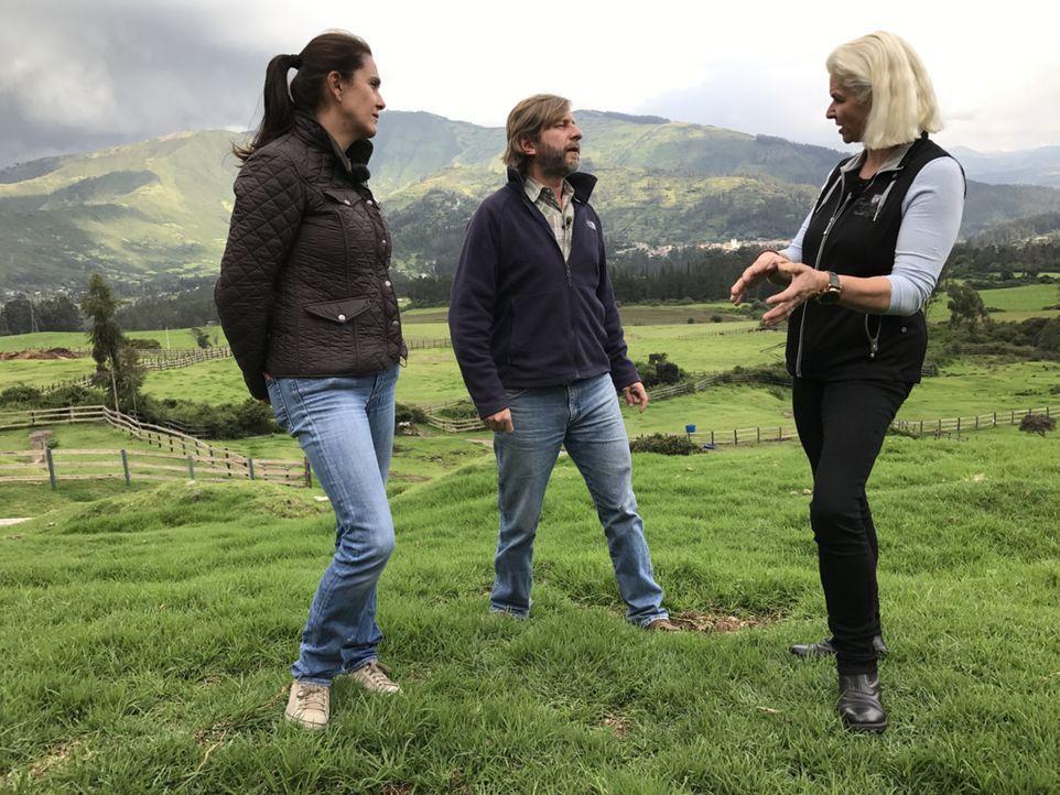 Pferdeflüsterer Juan (M.) und Carmen (r.) schauen bei einer Pferde-Universität vorbei ... - Bildquelle: kabel eins