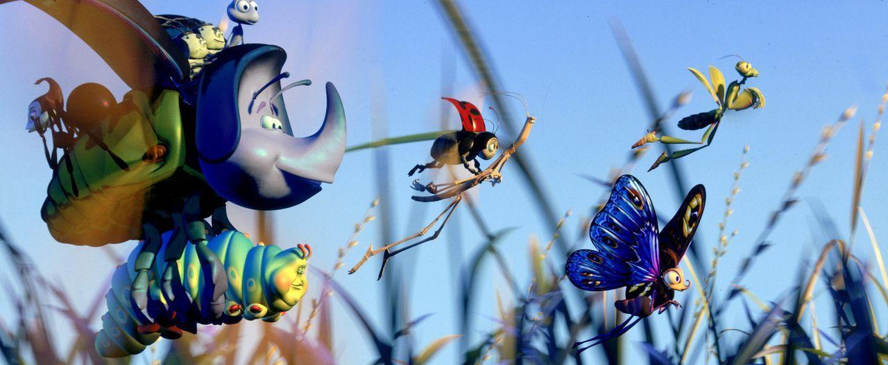 Wird es Flik (ganz oben), der gutmütigen Raupe Gustl, der Schwarzen Witwe Rosie, dem Marienkäfer Franzi, dem Nashornkäfer Dim, dem wandernden Spa... - Bildquelle: Disney/Pixar