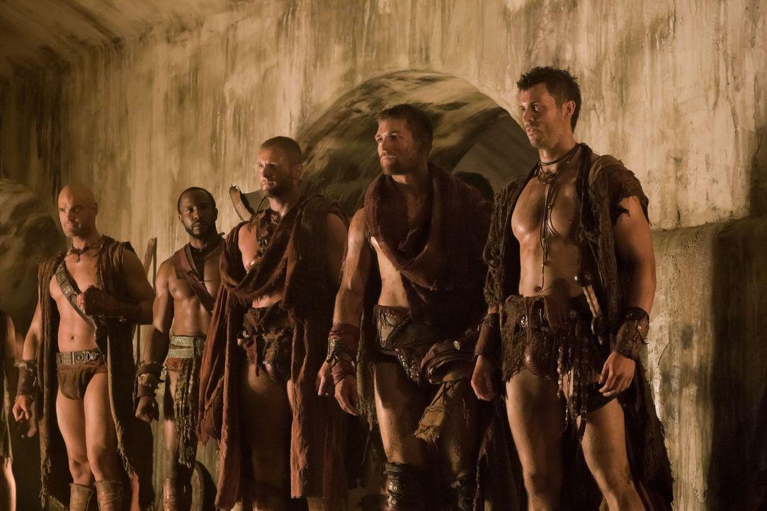 Spartacus (Liam McIntyre, 2.v.r.), Crixus und Agron (Daniel Feuerriegel, r.) beschließen, Capua gen Süden zu verlassen, aber auf ihrer Reise jeden... - Bildquelle: 2011 Starz Entertainment, LLC. All rights reserved.