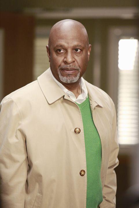 Während der rechtlichen Auseinandersetzung mit der Fluglinie, muss Webber (James Pickens, Jr.) feststellen, dass ihm ein unangenehmes Missgeschick... - Bildquelle: ABC Studios