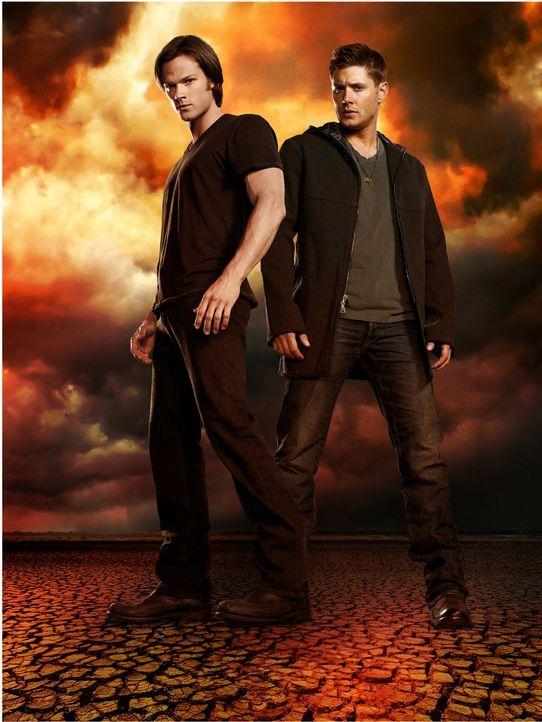 (8. Staffel) - Sollten Sam (Jared Padalecki, l.) und Dean (Jensen Ackles, r.) wirklich die ultimative Waffe gegen alle Dämonen gefunden haben? - Bildquelle: 2012   Warner Bros. Television. All rights reserved.