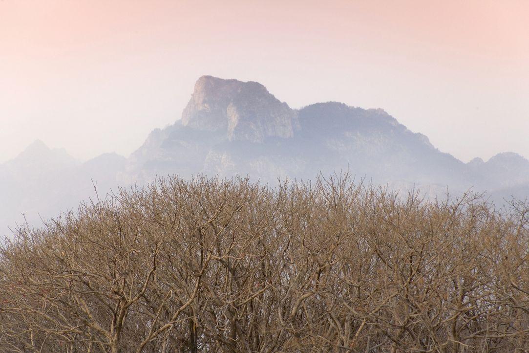 Die antiken Zivilisationen sahen die Berge unserer Erde als die Heimat der Götter. Warum teilten so viele Kulturen den Glauben, dass die Berge eine... - Bildquelle: Turismo de Tenerife