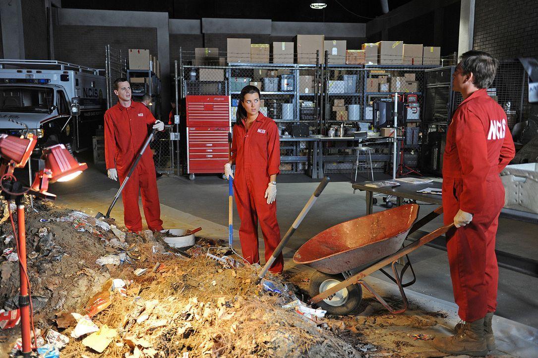 Ein neuer Fall beschäftigt Ziva (Cote de Pablo, M.), Tony (Michael Weatherly, r.) und McGee (Sean Murray, l.) ... - Bildquelle: CBS Television