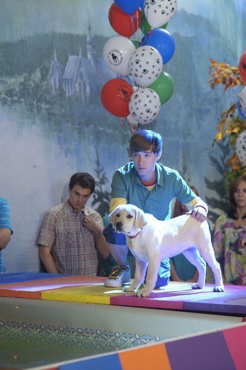 """Bodi Grogan (Travis Turner) kämpft sich bei einem Hundewettbewerb mit seinem Hund """"Marley"""" durch alle Disziplinen. Bis jetzt kann Marley alle Aufga... - Bildquelle: 2011 Twentieth Century Fox Film Corporation. All rights reserved."""
