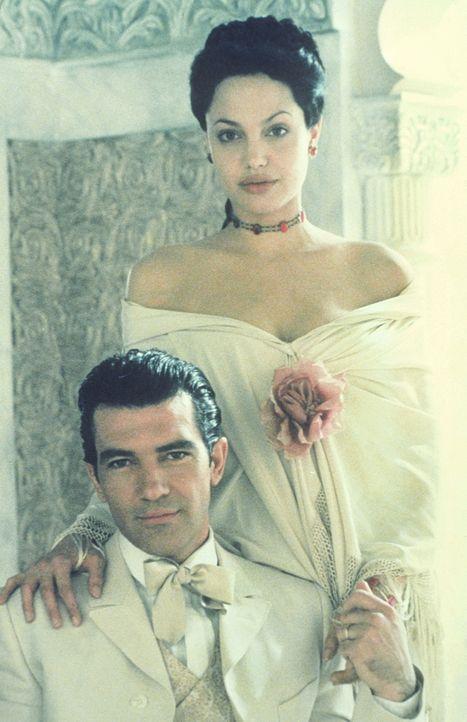 Für seine Liebe zu der hübschen Amerikanerin Julia Russell (Angelina Jolie, r.) muss Luis Antonio Vargas (Antonio Banderas, l.) einen hohen Preis... - Bildquelle: Metro-Goldwyn-Mayer Distributing Corporation