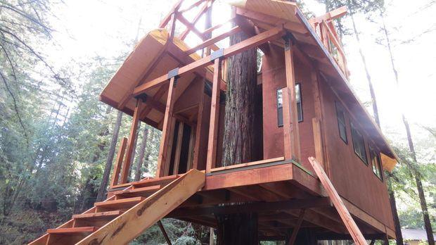Ein neues Abenteuer erwartet die Treehouse Guys in den Bäumen von Guerneville...
