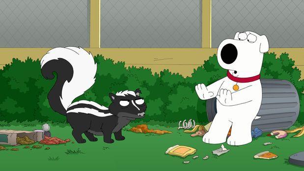 Family Guy - Brian (r.) ist von einem Stinktier (l.) im Garten bespritzt word...